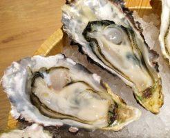 牡蠣 栄養